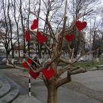 """Грейнаха сърца в ПГСАГ """"Пеньо Пенев"""" – Русе"""